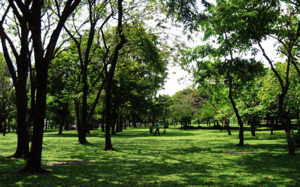 Parc Romaneenart
