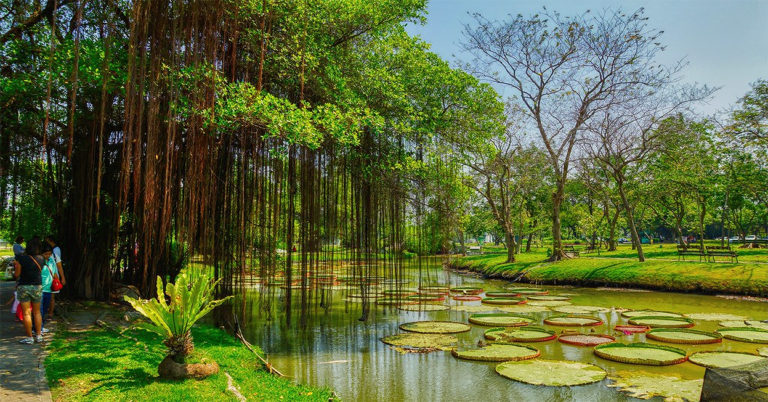 Les plus beaux parcs et espaces verts de Bangkok